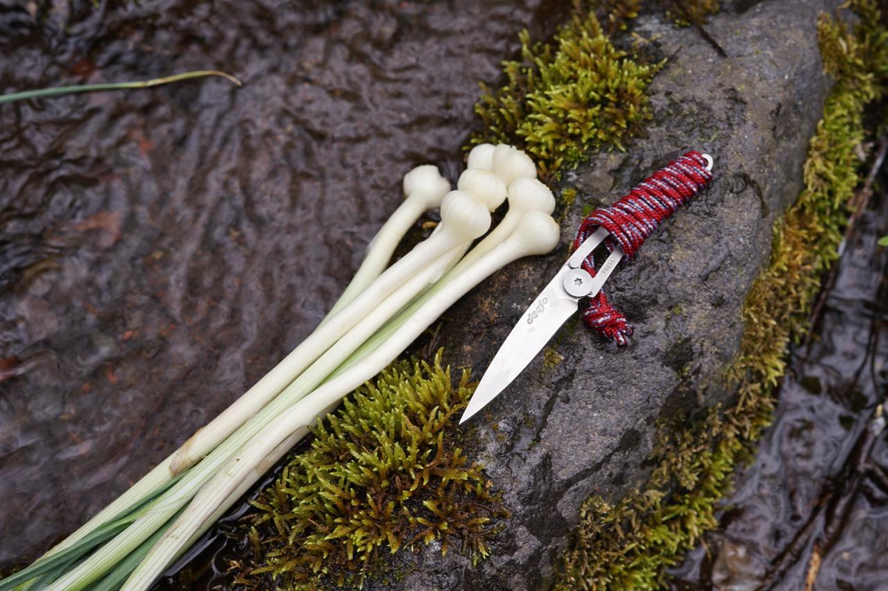 野遊びに使う最小最軽量のポケットナイフ