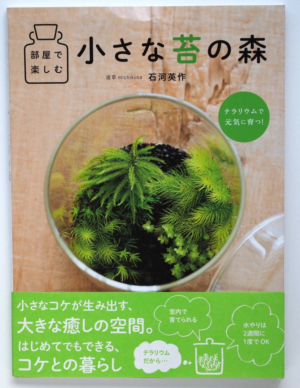 苔ブームですが、部屋の緑は苔テラリウム